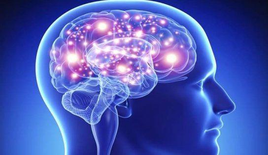 Yeni Deneysel İlaç, Yaşa Bağlı Hafıza Kaybını ve Ruh Halinizi Hızla İyileştirir
