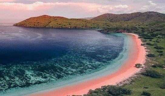 Komodo Adası Hakkında İlginç Bilgiler