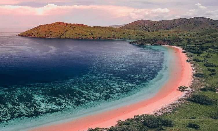 Pink beach komodao
