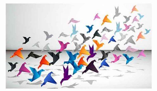 Turna Kuşu Hikâyesi