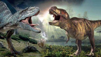 Dinozor Türleri